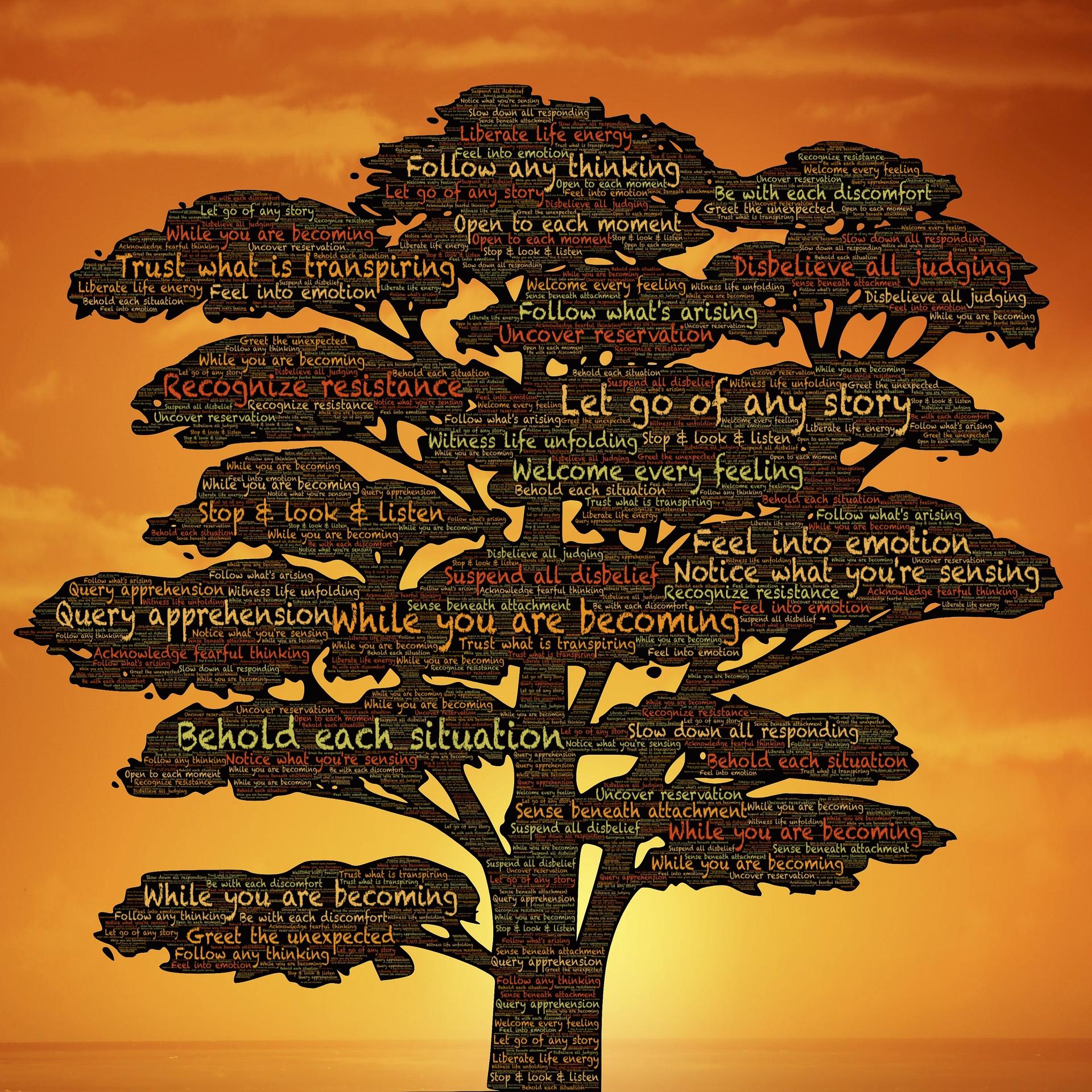 persoonlijke groei, bewustzijn, loopbaancoaching persoonlijke coaching, boom